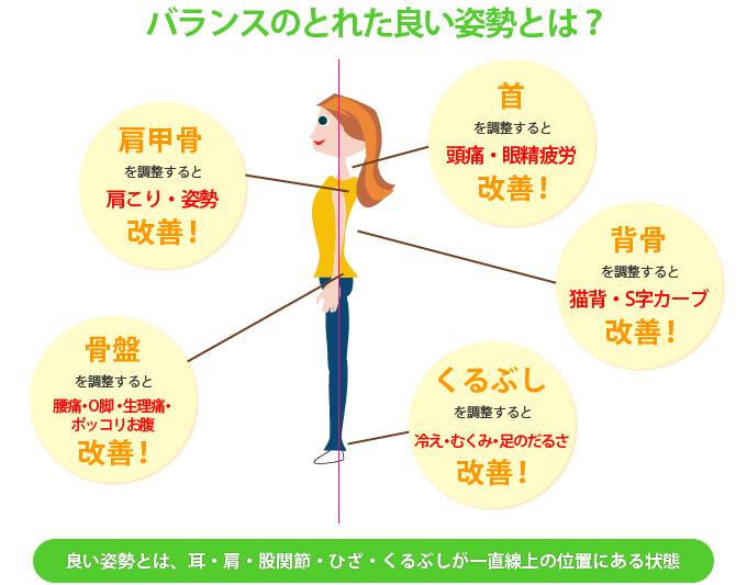 バランスのとれた良い姿勢とは、耳・肩・股関節・ひざ・くるぶしが一直線上にある状態のことをいいます。