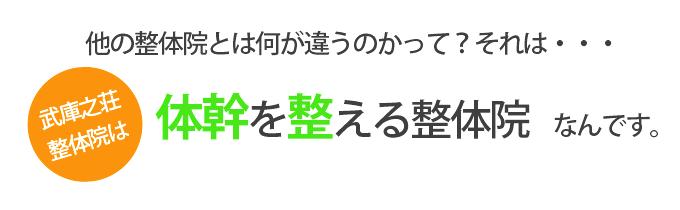 他の整体院と違うところ。武庫之荘整体院は体幹を整える整体院です。